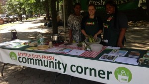 Community Corner 2014 website