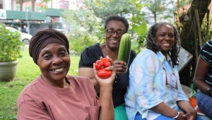 Local gardens provide local seniors opportunities to grow their own food, while also socializing with neighbors.