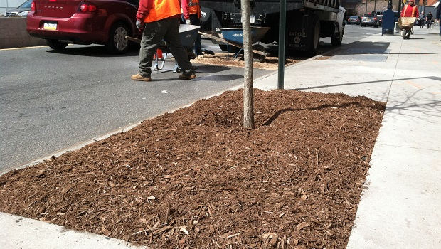 Aeration and Mulch