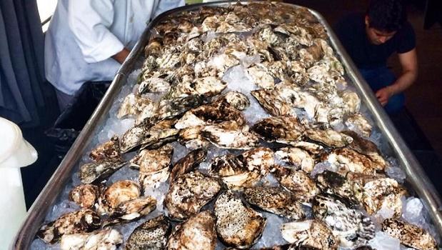 Putnams Oysters